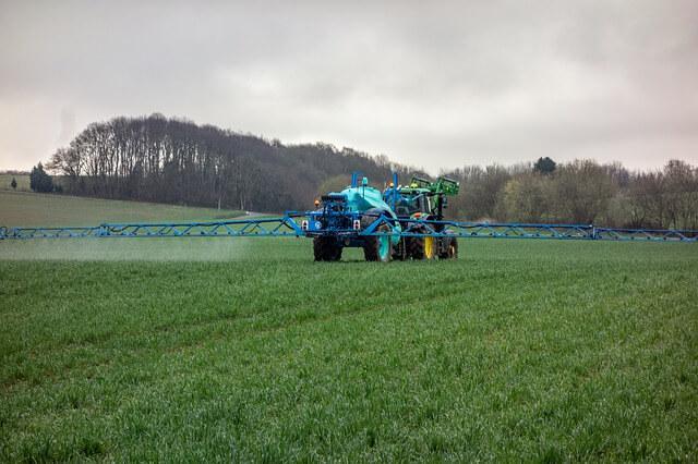 Gartenarbeit ohne Pestizide