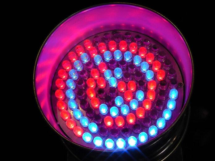 LED Wachstumslampen
